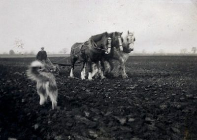 HorsePlough_1938L