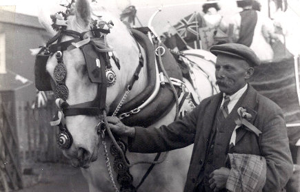 MrEnderby_Horse_1953L