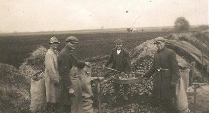 PotatoeRiddling1938L